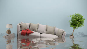 water damage restoration virginia beach