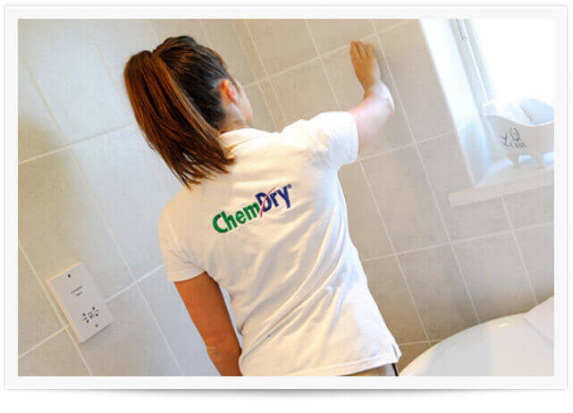 North American Chem-Dry carpet cleaning